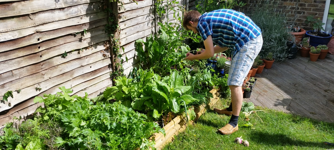 How to Compost in Your Own Garden The Greedy Vegan