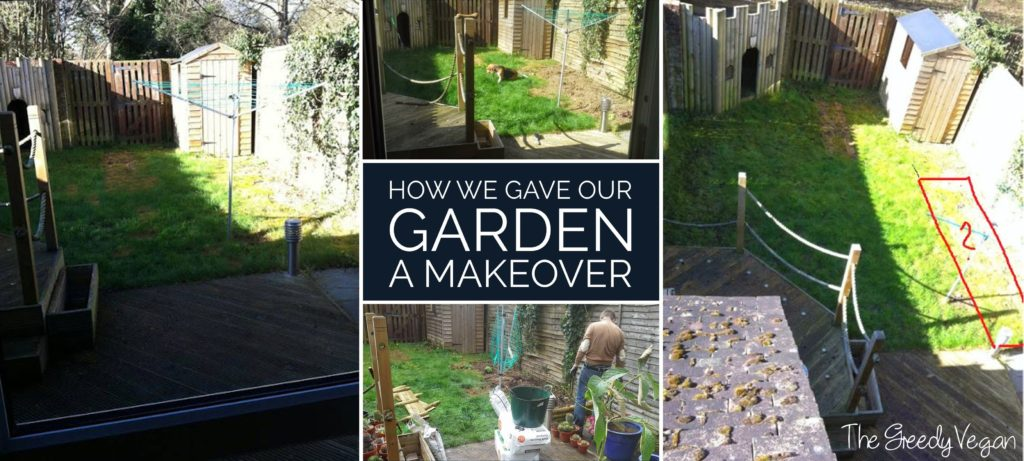 garden makeover 001