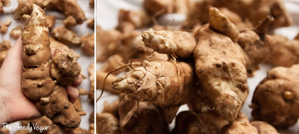 Growing and Harvesting Jerusalem Artichokes