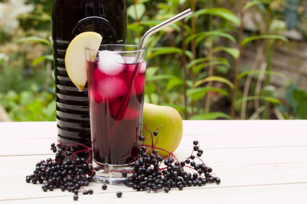 Elderberry cordial